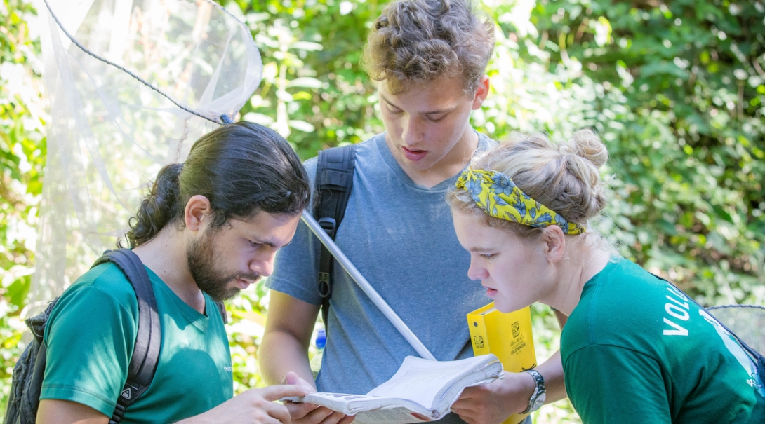 Volunteers conduct a butterfly survey as part of their Conservation volunteer work in Costa Rica.